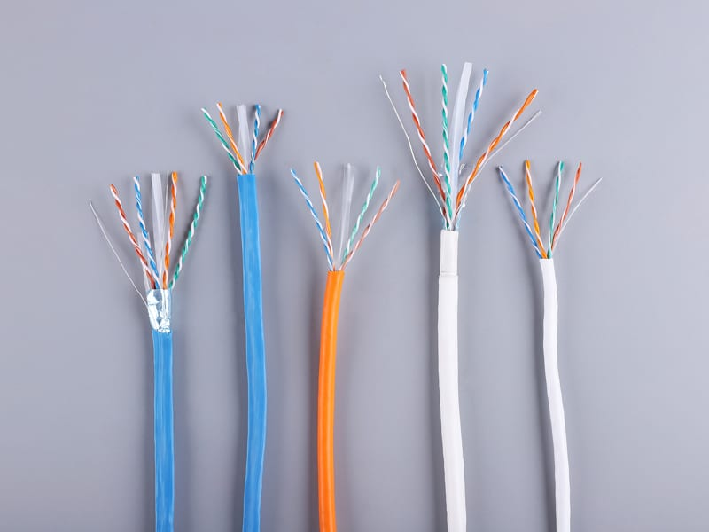 8 Year Exporter Cat6 Network Cable -